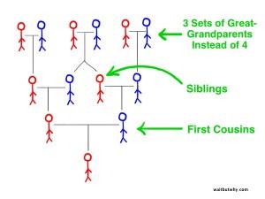 familytree3