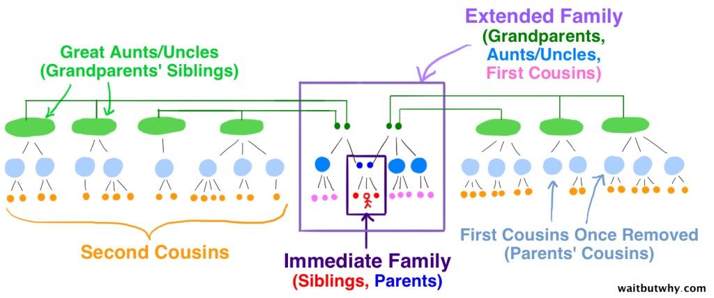 familytree4